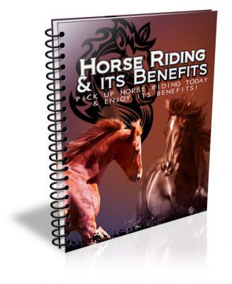 Horse Riding PLR Listbuilding Package horse riding plr listbuilding package cover 327x401