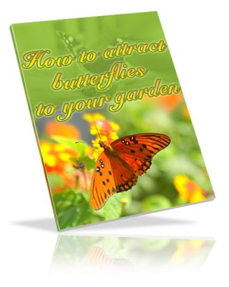 How To Attract Butterflies To Your Garden PLR Ebook how to attract butterflies plr ebook cover 327x409