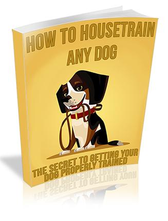 How to Housetrain Any Dog PLR Ebook