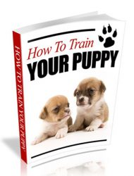 how to train your puppy plr ebook how to train your puppy plr ebook How To Train Your Puppy PLR Ebook how to train your puppy plr ebook 190x250
