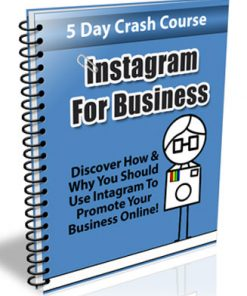 instagram for business plr autoresponder