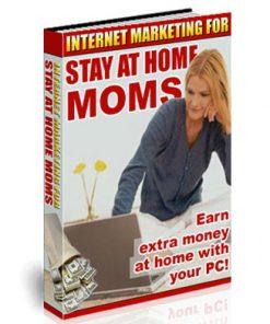 internet marketing for moms plr ebook and audio