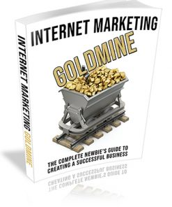 Internet Marketing Goldmine PLR Ebook