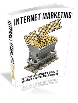 Internet Marketing Goldmine PLR Ebook