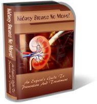 kidney-stones-plr-template-cover  Kidney Stones PLR Template Landing Page kidney stones plr template cover 190x204