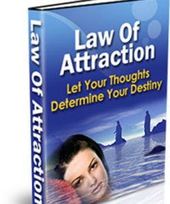 law of attraction plr ebook