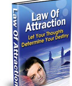 law of attraction plr ebook