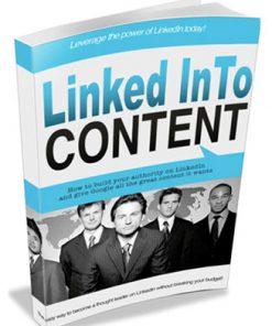 linkedin content plr ebook
