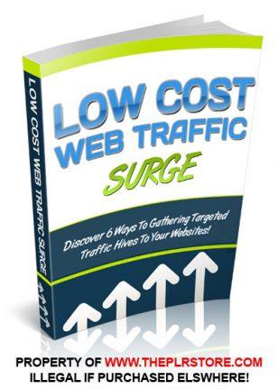 Low Cost Web Traffic PLR Ebook low cost web traffic plr ebook 308x431