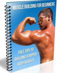 muscle building for beginners plr