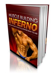 Muscle Building Inferno PLR Ebook muscle building inferno plr ebook Muscle Building Inferno PLR eBook muscle building inferno plr ebook 190x250