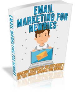 Newbie Email Marketing PLR Ebook