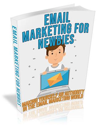 Newbie Email Marketing PLR Ebook
