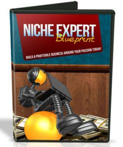 Niche Expert Blueprint Videos