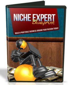 Niche Expert Blueprint Videos