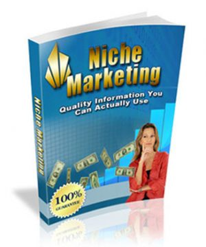 niche marketing ebook