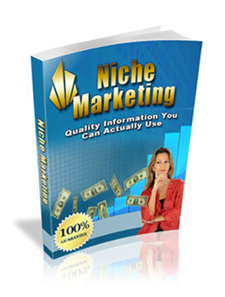 niche marketing ebook
