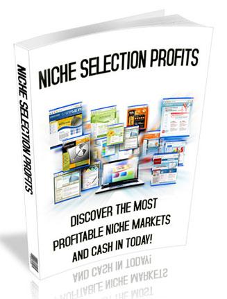 niche selection profits plr ebook