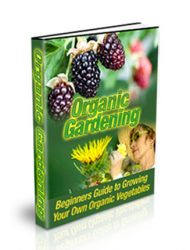 Organic Vegetable Gardening Ebook MRR