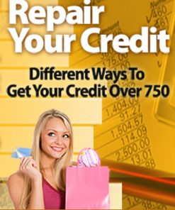 Repair Your Credit PLR Ebook