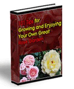 Rose Garden PLR Ebook