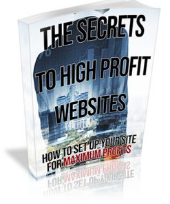 The Secrets to High Profit Websites PLR Ebook