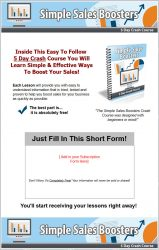 private label rights Private Label Rights and PLR Products simple sales booster plr ar series squeeze page 159x250