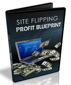 site flipping profit blueprints videos mrr