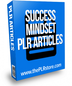 success mindset plr articles