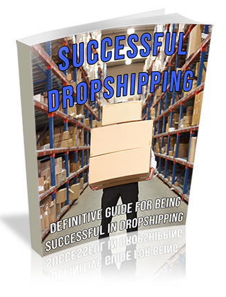 Successful Dropshipping PLR Ebook