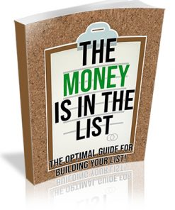 The Money is in the List PLR Ebook