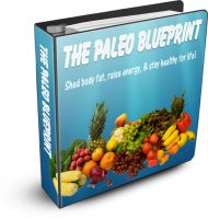 private label rights Private Label Rights and PLR Products the paleo diet blueprint plr ebook cover 2 190x200