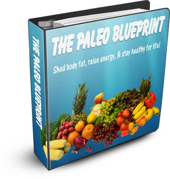 Paleo diet blueprint plr ebook paleo malvernweather Gallery