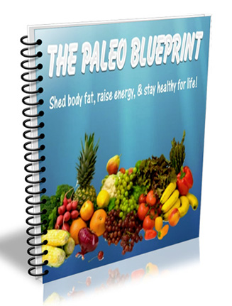 paleo diet blueprint plr ebook
