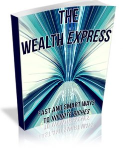 The Wealth Express PLR Ebook
