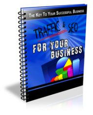 traffic-for-your-business-plr-ar-series-cover  SEO and Traffic for Your Business PLR Autoresponder Messages traffic for your business plr ar series cover 190x233