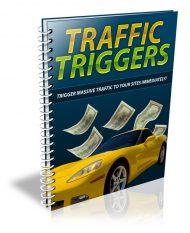 traffic-triggers-plr-ebook-cover  Traffic Triggers PLR Ebook with Squeeze and Reseller traffic triggers plr ebook cover 190x233