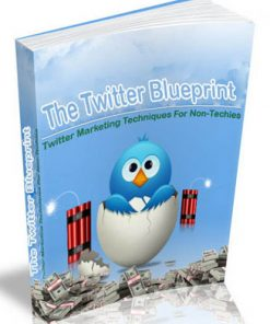 twitter profit blueprint plr ebook