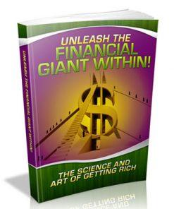 Unleash the Financial Giant PLR eBook