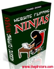 wesite-flipping-ninjas-plr-ebook  Website Flipping Ninjas PLR Ebook wesite flipping ninjas plr ebook 190x242