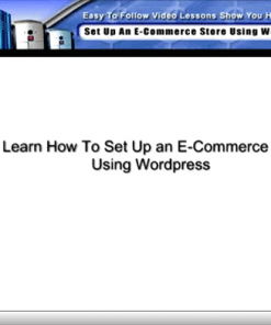wordpress ecommerce set up video