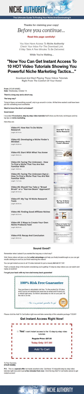 what is niche marketing pdf
