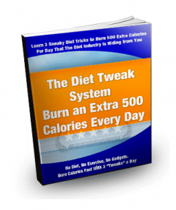 diet tweak system plr ebook
