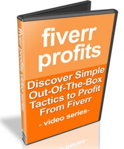 fiverr profits plr videos