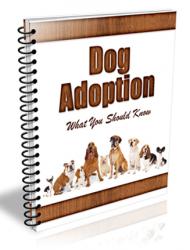 dog adoption plr autoresponder messages dog adoption plr autoresponder messages Dog Adoption PLR Autoresponder Messages with Private Label Rights dog adoption plr autoresponder messages 190x250