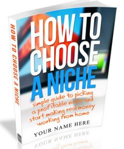 how to choose a niche plr ebook
