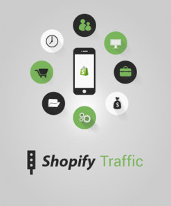 shopify traffic videos