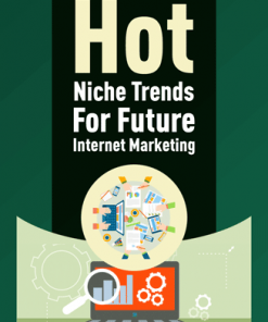 hot trends niches for internet marketing plr report