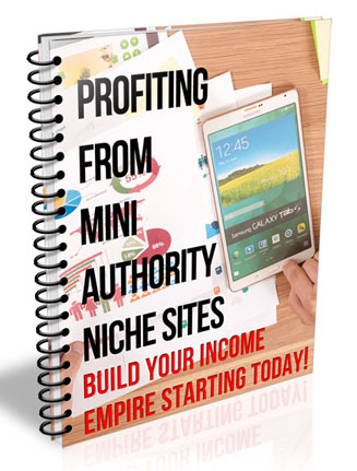 profiting from mini authority niche sites ebook