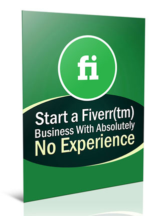 how to start a fiverr business plr report